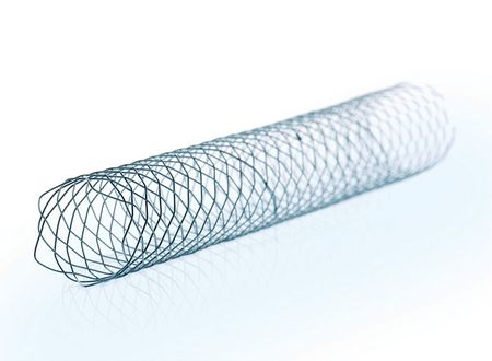BILIARY STENT