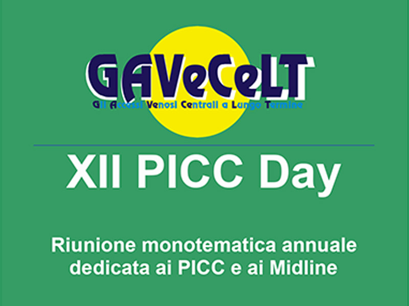 04/12/18 - XII PICC DAY 2018